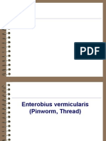 E. vermicularisi