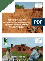 Experiencias en protección ambiental con vetiver en la mina de Bauxita de Los Pijiguaos