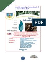 Monografia Derecho de Mineria Gases e Hidrocarburos