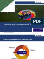 BCP HAY Diccionario Competencias