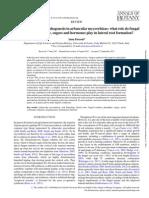 Base Raiz 01 Regulation of Root Morphogenesis