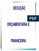 Exec-orca-financeira.pdf