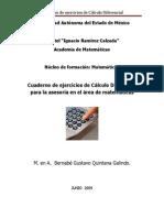 Cuaderno de Ejercicios de Calculo Diferencial e Integral 2009
