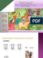 sindrome diarreico
