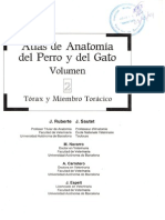 Atlas Anatomia Perro Gato II