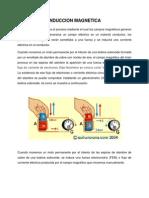 INDUCCION MAGNETICA.docx