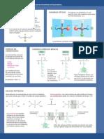 P8 Aminoacidos