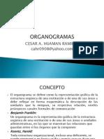 ORGANOGRAMAS[1]