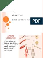 sistemaoseo-100418175332-phpapp02