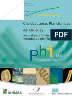 Ciano Bacterias