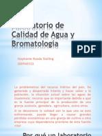 PPW Proyecto economia