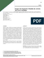 Anatomia Carótida Clinóide