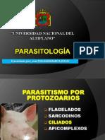 Tema de Exposición de Parasitologia Balantidium Coli.