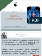 Clase 06 Sistema Cardiovascular