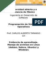 PSO_U3_EA_CAAC
