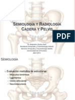 Semiología y Radiologia Cadera y Pelvis Alejandro Godoy