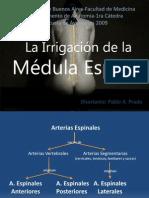irrigacionmedular-121022001126-phpapp01