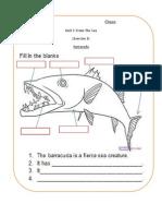 Appendix Barracuda