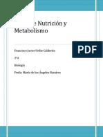 Tipos de Nutrición y Metabolismo