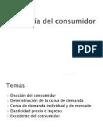 03 Teoria Del Consumidor