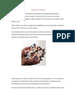 Aminoacidos y Proteinas Biologia