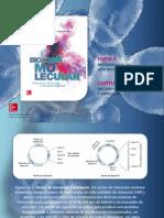 Armendariz Biologia Molecular 1a Banco Imagen c14 VECTORES CLONACION