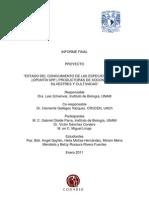 Informe Final Opuntia