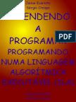 Aprendendo a Programar
