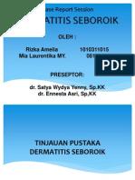 Slide Case DS