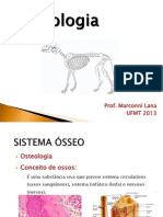 1-Osteologia