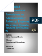 4to Avance Practica Profesional