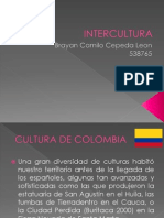 Inter Cultura