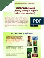 Proceso de Ingestión, Digestión y Absorción en El Ser Humano 00