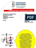 Clase 9 Sistema Nervioso Vegetativo (Sna)