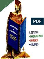 Anatomía I, II