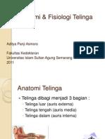 Anatomi & Fisiologi Telinga Adit
