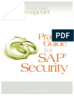 Practical Guide for Sap Security