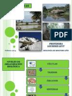 Ecosistemas Biologiadesegundoao Profesoralourdeslevy Febrero2014 140304010315 Phpapp02