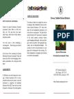 prek assessment flyer