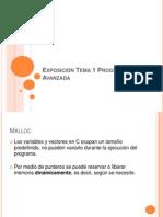 Exposición Tema 1 Programación Avanzada[1]