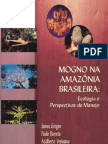 mogno na amazonia brasileira