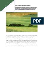 Setos vivos.pdf