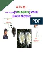 Lecture Mod Phys Fall 2014 NPG 3 Introduction Quantum Mechanics