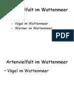Artenvielfalt im Wattenmeer.pptx