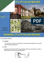 aulaleisdemendel-120617105527-phpapp01