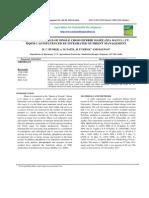11. Growth and Yield of Single Cross Hybrid Maize (Zea Mays l.) Cv. PDF