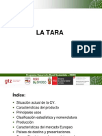 Tara Ayacucho
