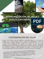 Biorremediacion Del Agua y Suelos Contaminados