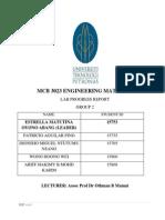 Lab Progress Report EM
