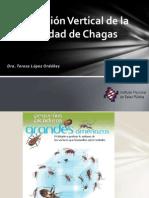 Transmisión Vertical de La Enfermedad de Chagas Tlo